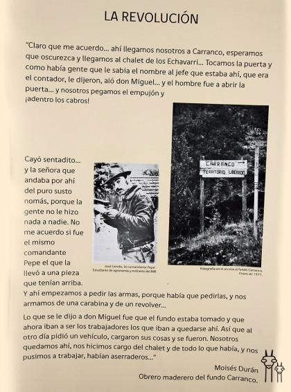 Neltume_Chile_museo_07